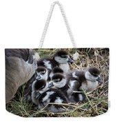 Egyptian Goose Alopochen Aegyptiacus Weekender Tote Bag