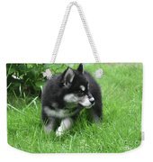 Eight Week Old Alusky Puppy On A Summer Day Weekender Tote Bag