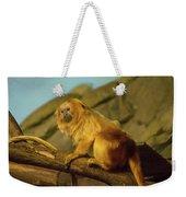 El Paso Zoo - Golden Lion Tamarin Weekender Tote Bag by Allen Sheffield