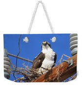 Electric Blue Osprey Weekender Tote Bag