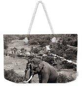 Elephant And Keeper, 1902 Weekender Tote Bag
