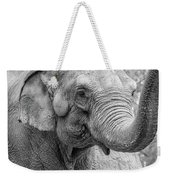 Elephant And Tree Trunk Black And White Weekender Tote Bag