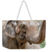 Elephant And Tree Trunk Weekender Tote Bag