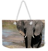 Elephant At The River Weekender Tote Bag