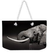 Elephant Bull Drinking Water - Duetone Weekender Tote Bag
