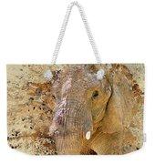 Elephant Color Splash Weekender Tote Bag