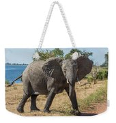 Elephant Crossing Dirt Track Facing Towards Camera Weekender Tote Bag