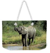 Elephant Drinking Weekender Tote Bag