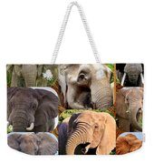 Elephant Faces Weekender Tote Bag