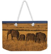 Elephant Family - Sunset Stroll Weekender Tote Bag