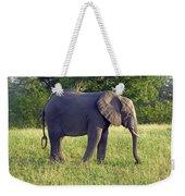 Elephant Feeding Weekender Tote Bag