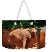 Elephant In Red Clay Weekender Tote Bag