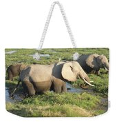 Elephant Mother And Calves Weekender Tote Bag