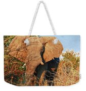 Elephant On Approach Weekender Tote Bag