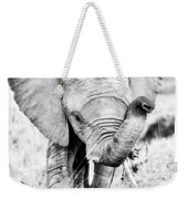 Elephant Portrait In Black And White Weekender Tote Bag