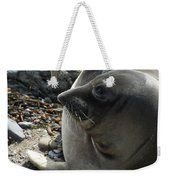 Elephant Seal Weekender Tote Bag