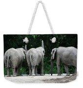Elephant Trio Weekender Tote Bag