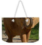 Elephant Walk Weekender Tote Bag