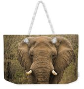 Elephant Watching Weekender Tote Bag
