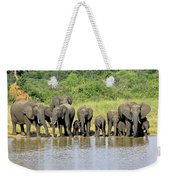 Elephants At The Waterhole   Weekender Tote Bag