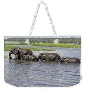Elephants Crossing Chobe River Weekender Tote Bag