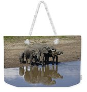 Elephants In The Mirror Weekender Tote Bag
