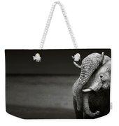 Elephants Interacting Weekender Tote Bag
