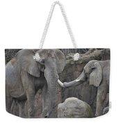 Elephants Playing 3 Weekender Tote Bag