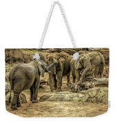 Elephants Social Weekender Tote Bag