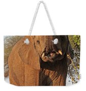 Elephant's Supper Time Weekender Tote Bag