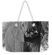 Elephant's Supper Time In Black And White Weekender Tote Bag