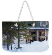 Elk Come Calling Weekender Tote Bag