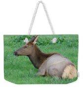 Elk Cow Weekender Tote Bag