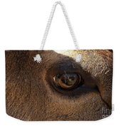 Elk Eye Close Up Weekender Tote Bag