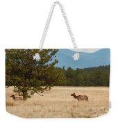 Elk In The Fossil Beds Weekender Tote Bag