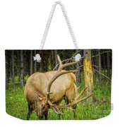 Elk In The Woods Weekender Tote Bag