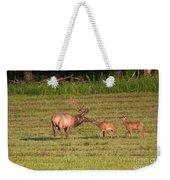 Elk Kisses Weekender Tote Bag by Jemmy Archer