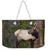 Elk Looking Back Weekender Tote Bag
