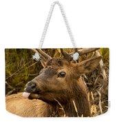 Elk Raspberry For Tom Weekender Tote Bag