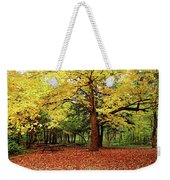 Elora Gorge Campsite In Fall Weekender Tote Bag