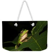 Emerald Eye Tree Frog Weekender Tote Bag