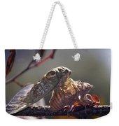 Emerging - Cicada 1 Weekender Tote Bag