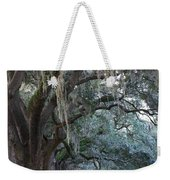 Emmet Park In Savannah Weekender Tote Bag