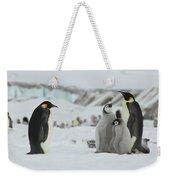 Emperor Penguin Landscape Weekender Tote Bag