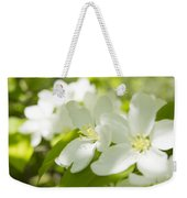 Encyclopedia Of Spring Image Apple Blossom  Weekender Tote Bag