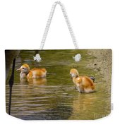 Enjoying The Water 2 Weekender Tote Bag