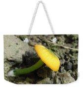 Entoloma Incanum Weekender Tote Bag