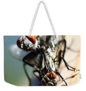 Entomologists Discover Why People Want To Be A Fly On The Wall Weekender Tote Bag