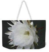 Epiphyte Blossom - Epiphyllum Oxypetalum Weekender Tote Bag