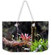 Epiphytic Plants Weekender Tote Bag